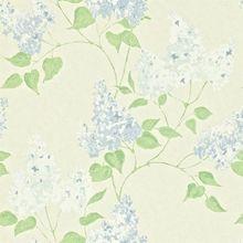 Обои Maycott Lilacs 211984