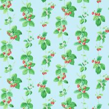 Обои Vintage 2 Summer Strawberries 214591