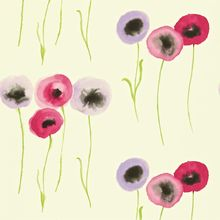 Обои Colour for Living Poppies 211664