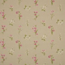 Ткань Pemberley Flowers Country Flowers DPEMCO204